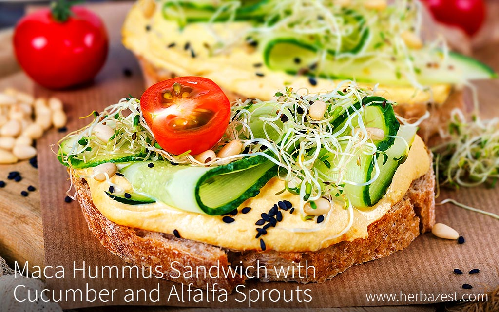 Maca Hummus Sandwich with Cucumber and Alfalfa Sprouts
