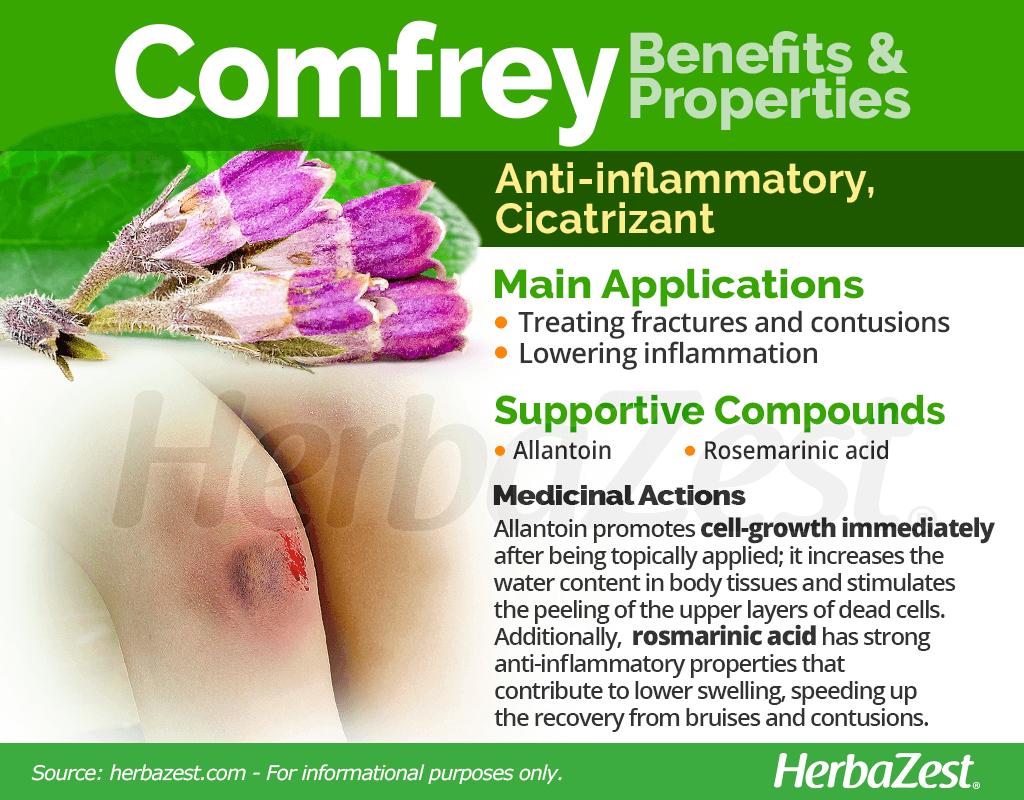 Comfrey Benefits and Properties