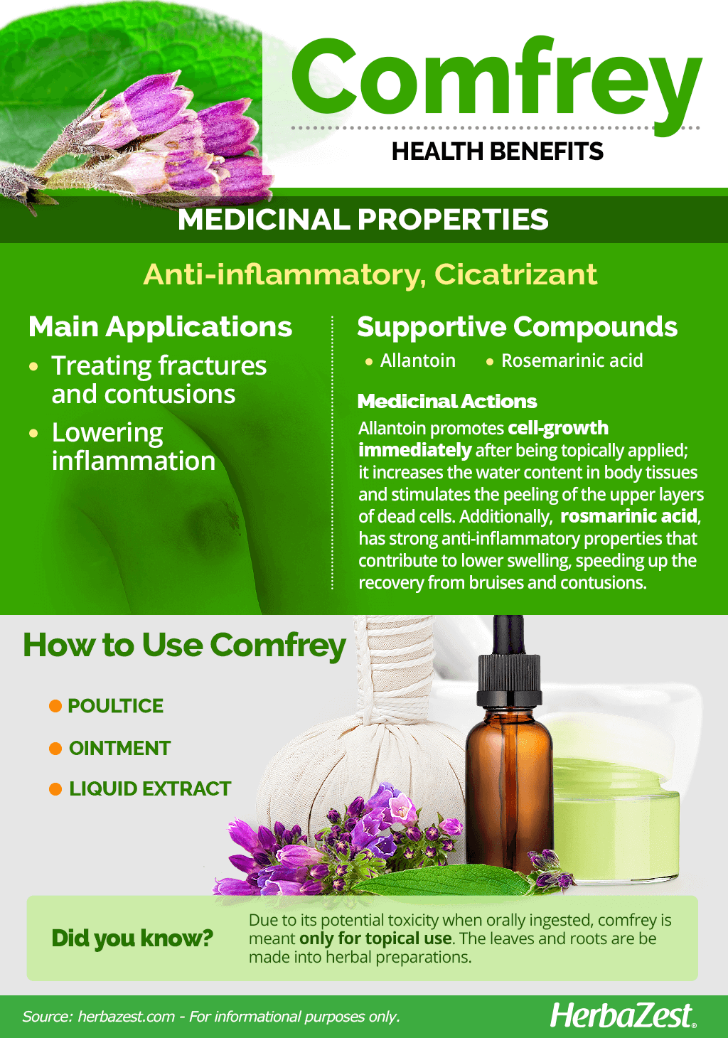 All About Comfrey