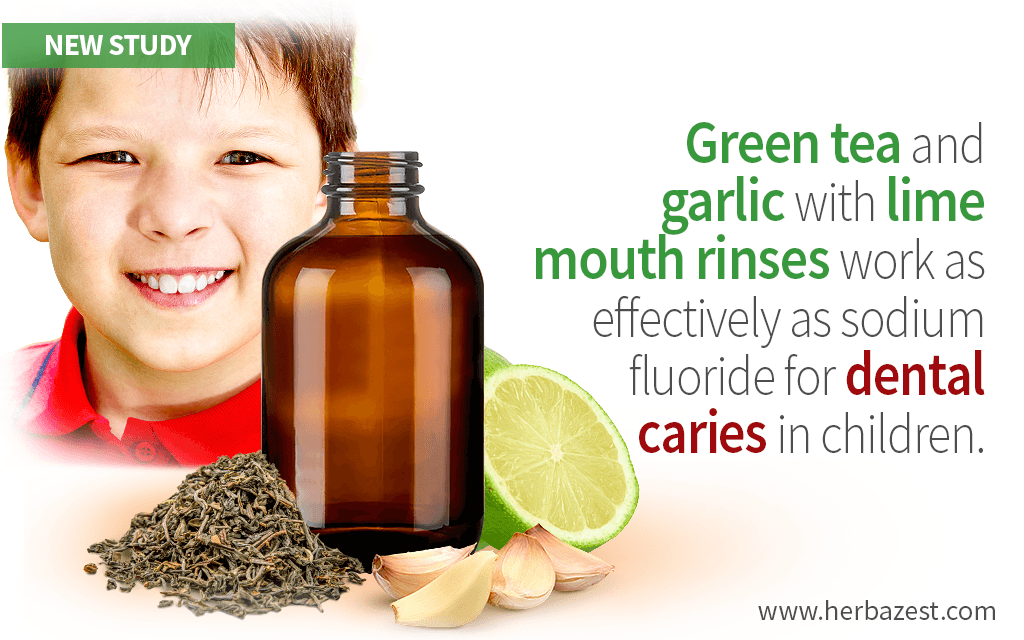 Green Tea and Garlic with Lime Mouth Rinses for Dental Caries