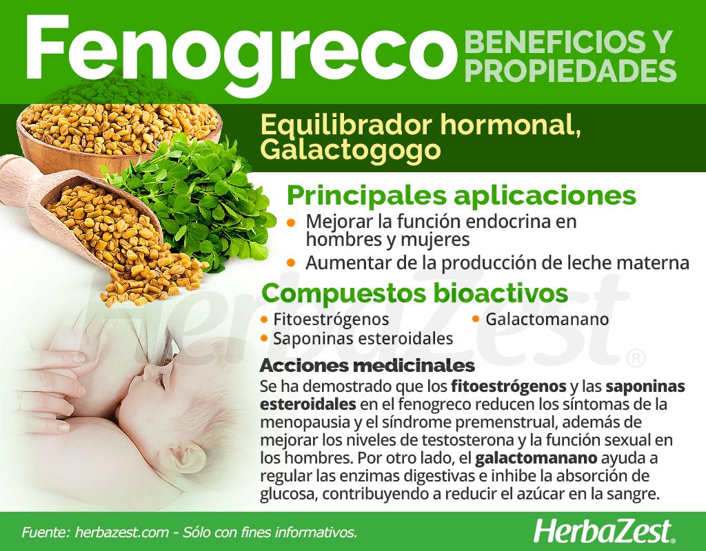Beneficios y propiedades del fenogreco