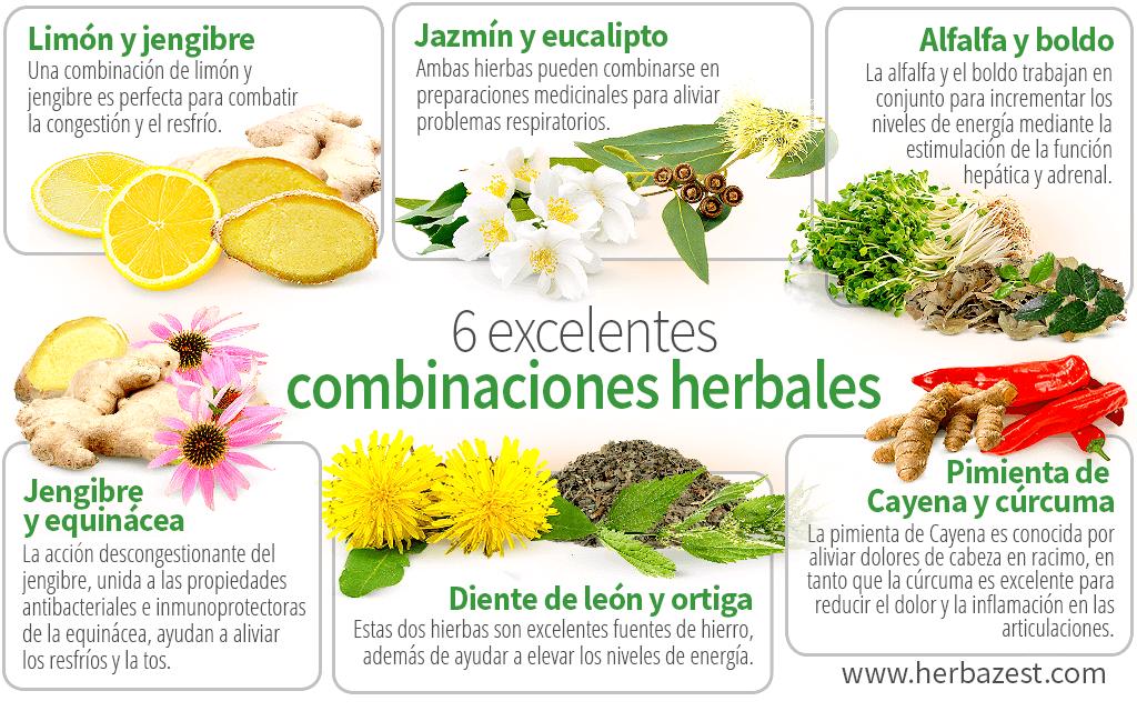 6 excelentes combinaciones herbales