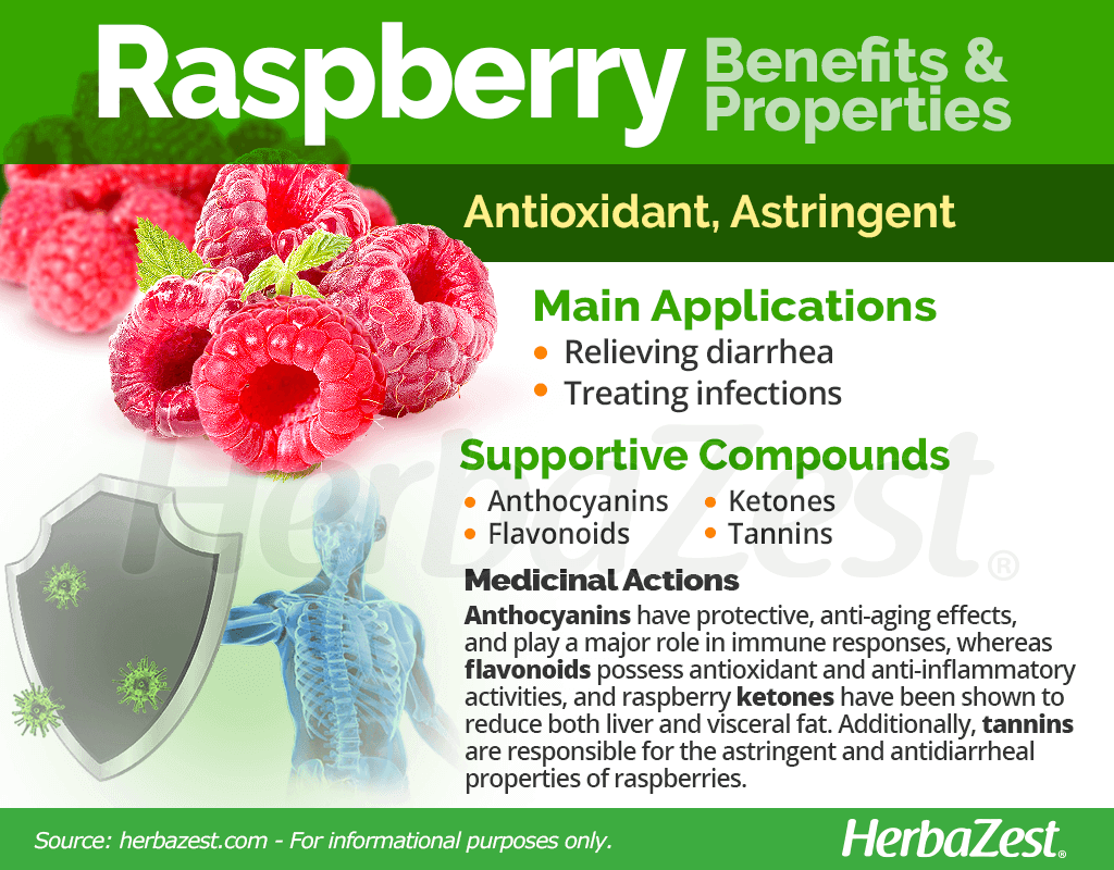 Raspberry Benefits and Properties