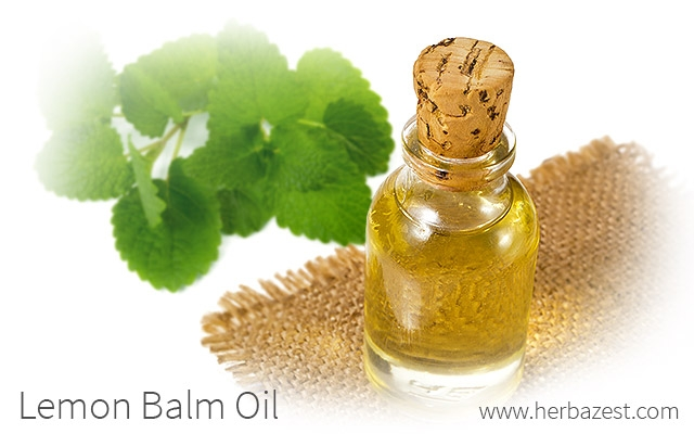 Lemon Balm Oil
