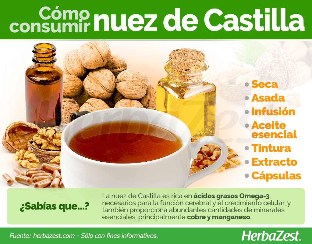 Cómo consumir nuez de Castilla