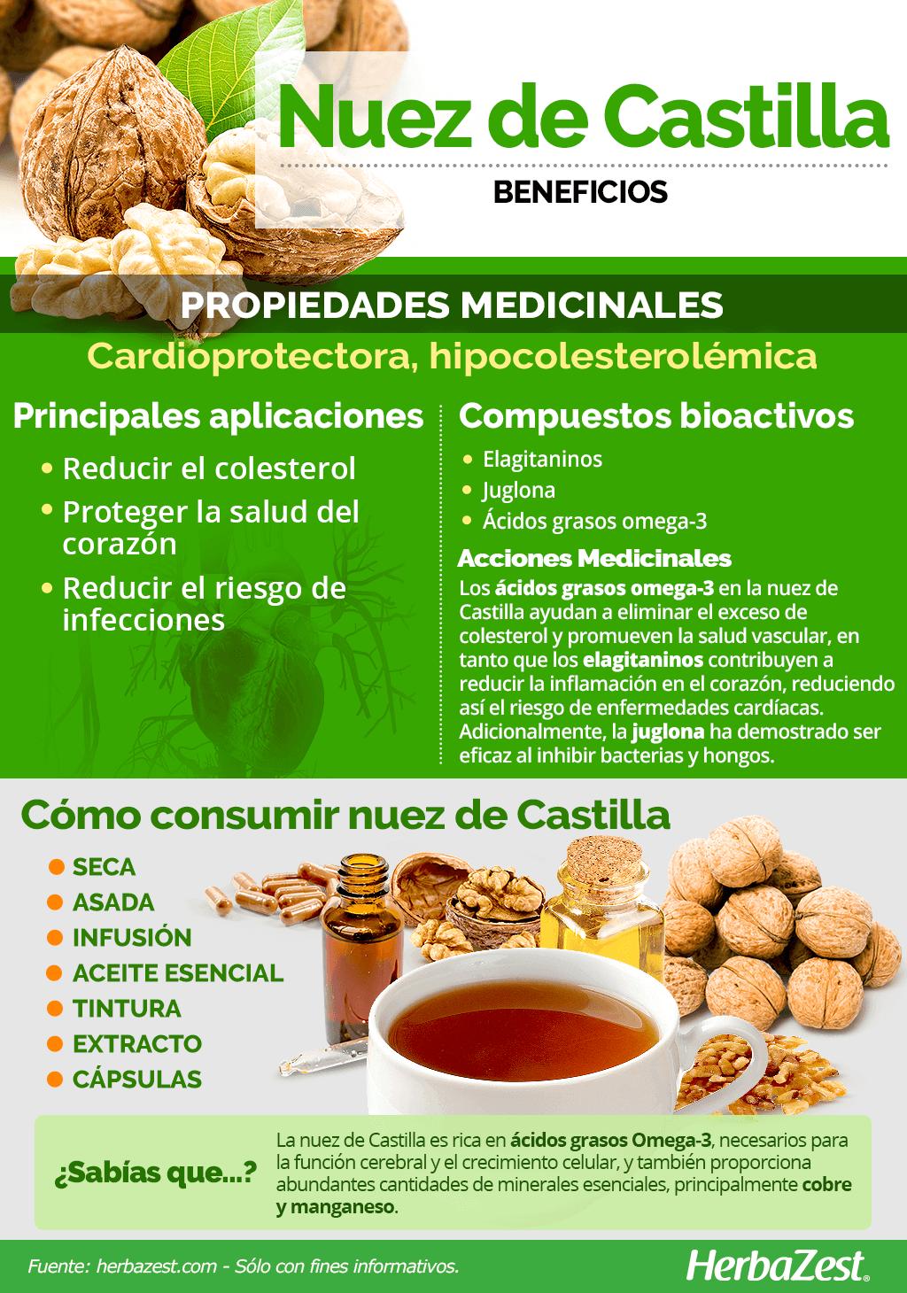 Beneficios de la nuez de Castilla