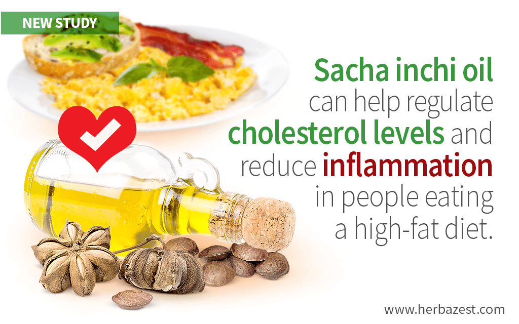 Sacha Inchi Oil Can Improve Cholesterol Levels After High-Fat Meals