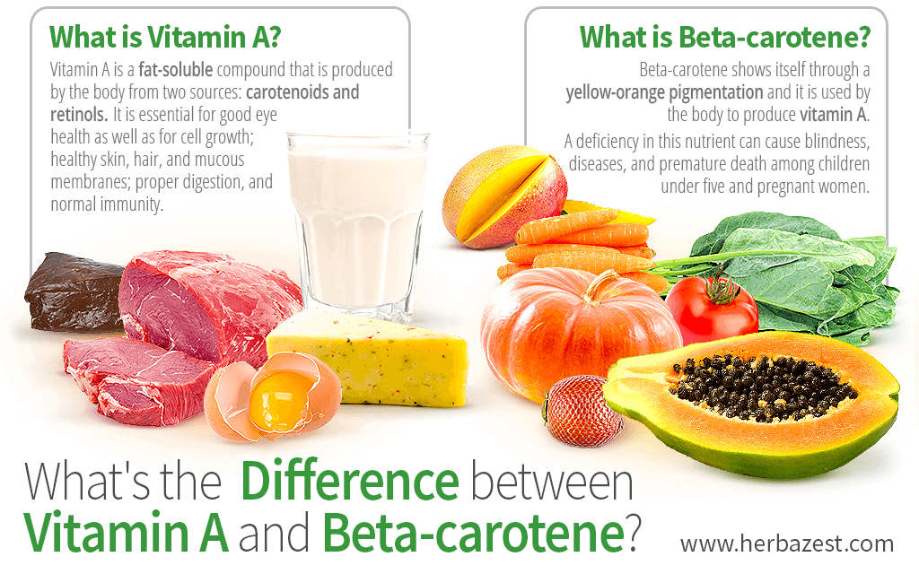 What's the Difference between Vitamin A and Beta-carotene?