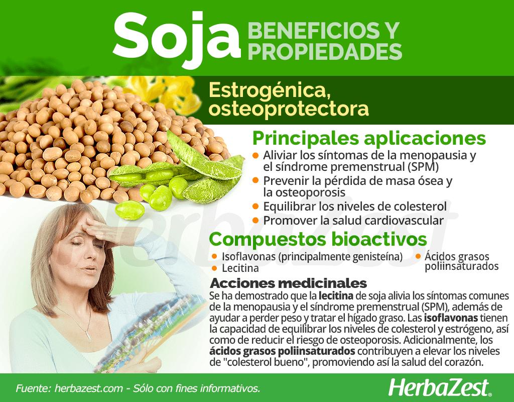 Beneficios y propiedades de la soja