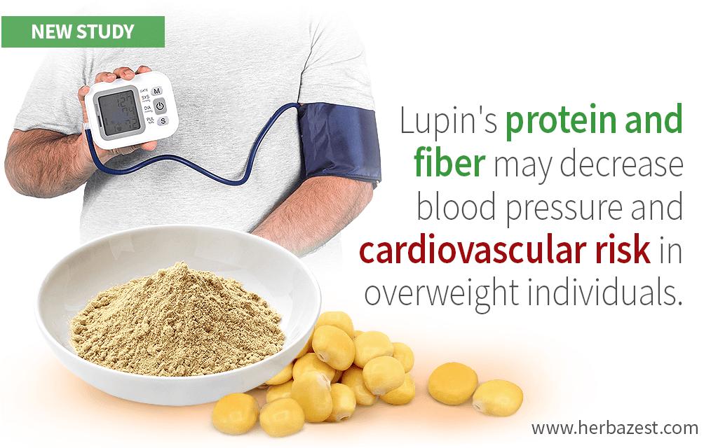 Lupin Flour Offers Cardiovascular Health Benefits