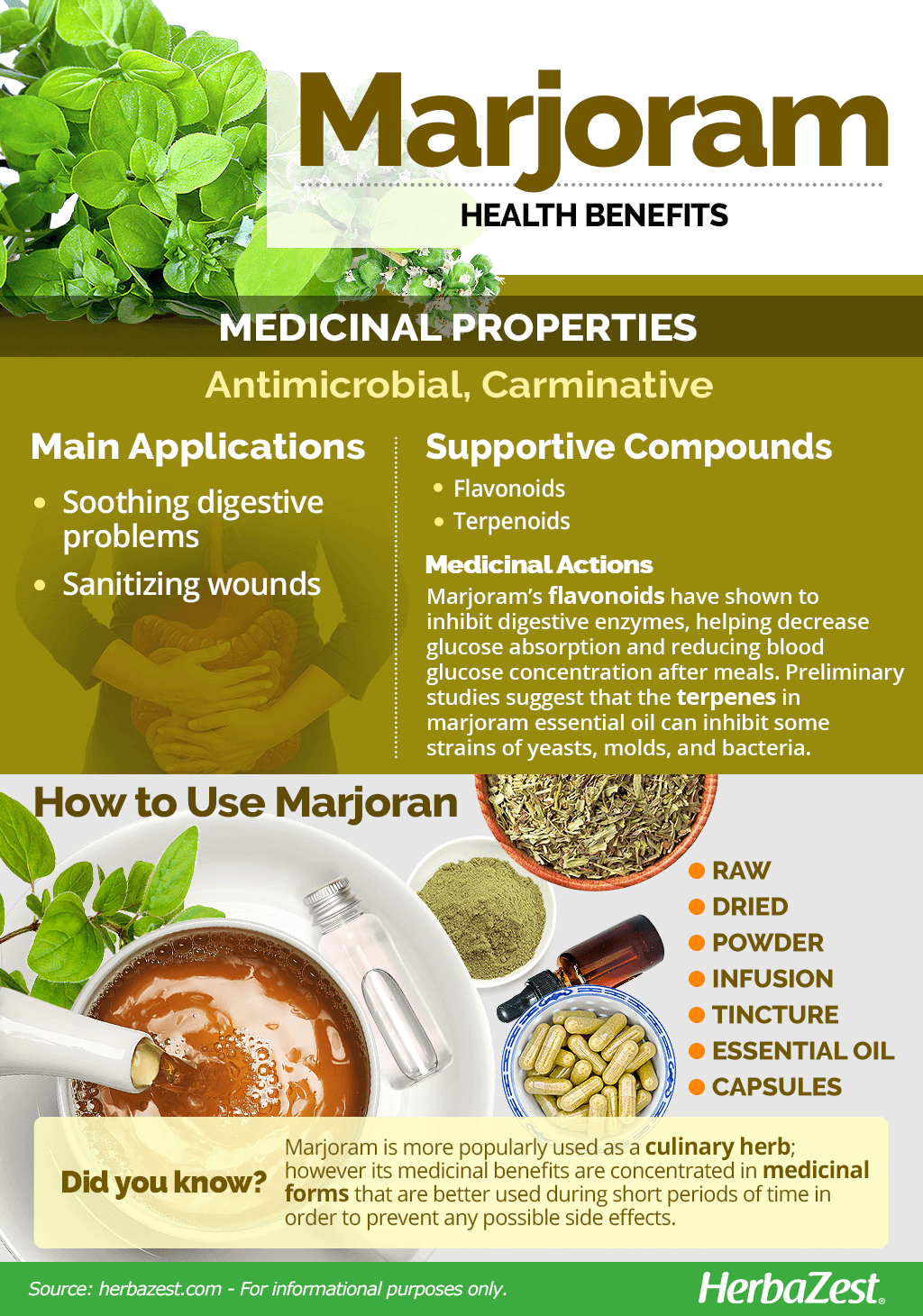 All About Marjoram