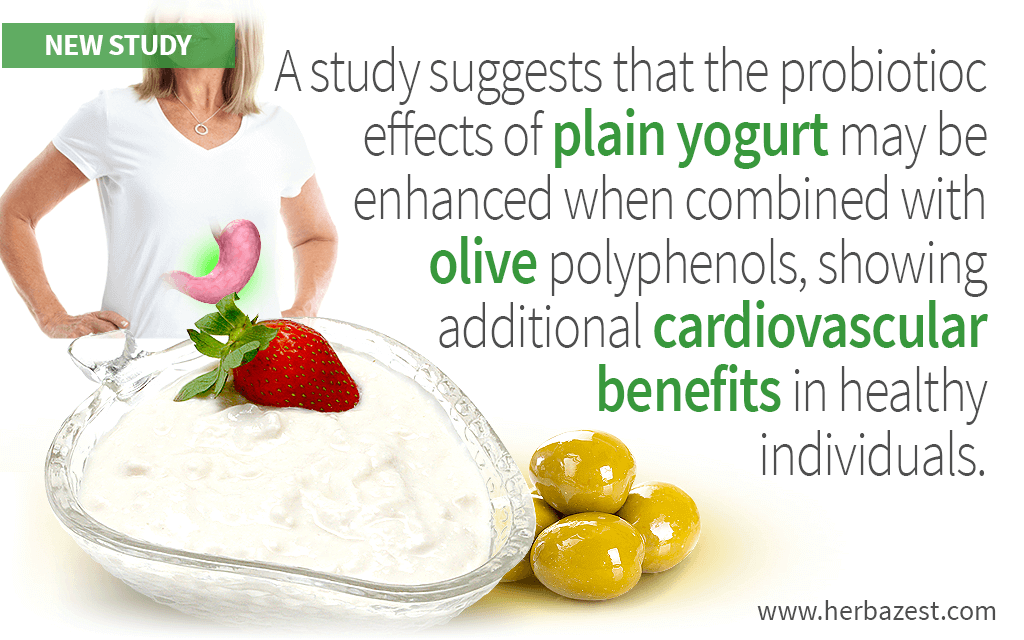 Yogurt with Olive Polyphenols Shown to Reduce Cholesterol