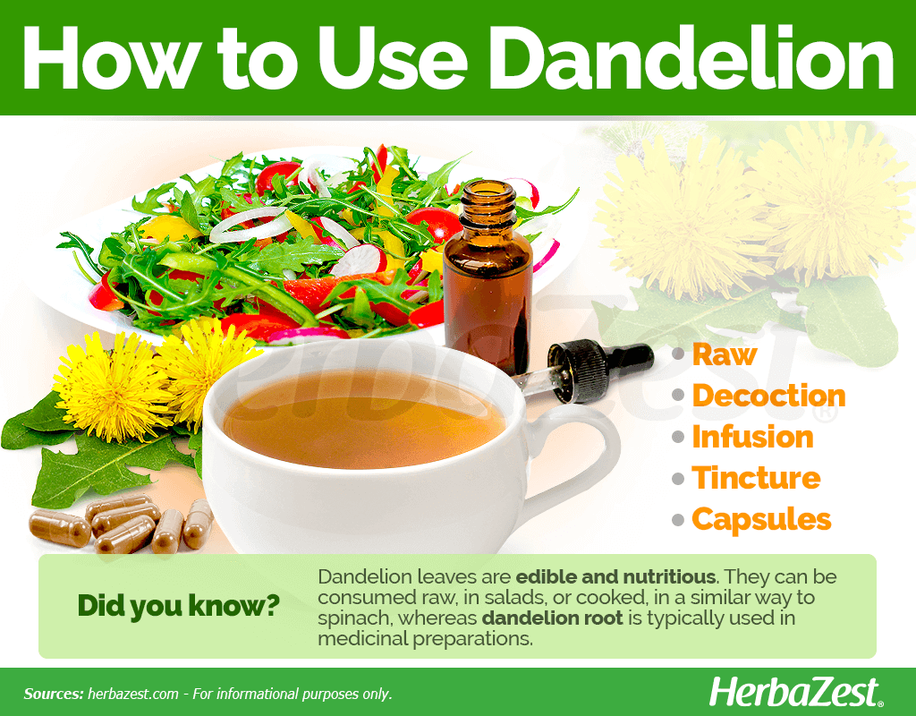 How to Use Dandelion