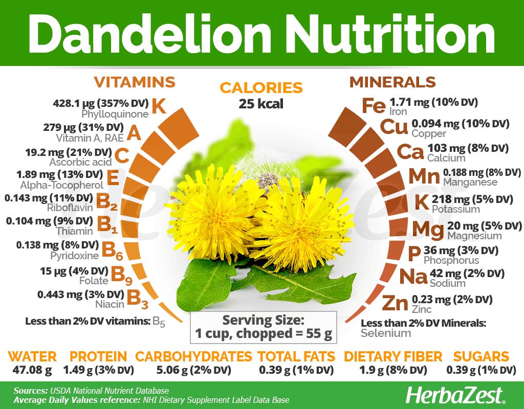 Dandelion Nutrition