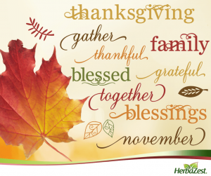 Special Date: Thanksgiving 2015