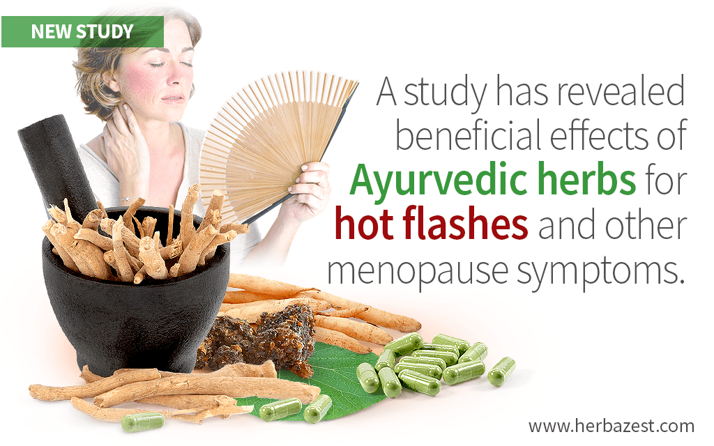 Beneficial Effects of Ayurvedic Herbs for Hot Flashes and Other Menopause Symptoms