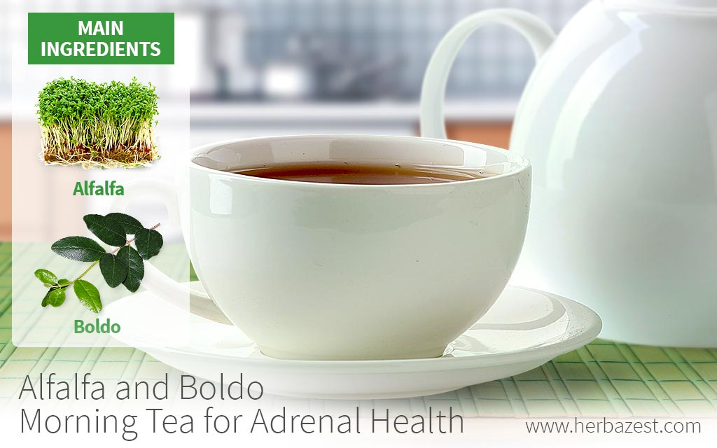 Alfalfa and Boldo Morning Tea for Adrenal Health