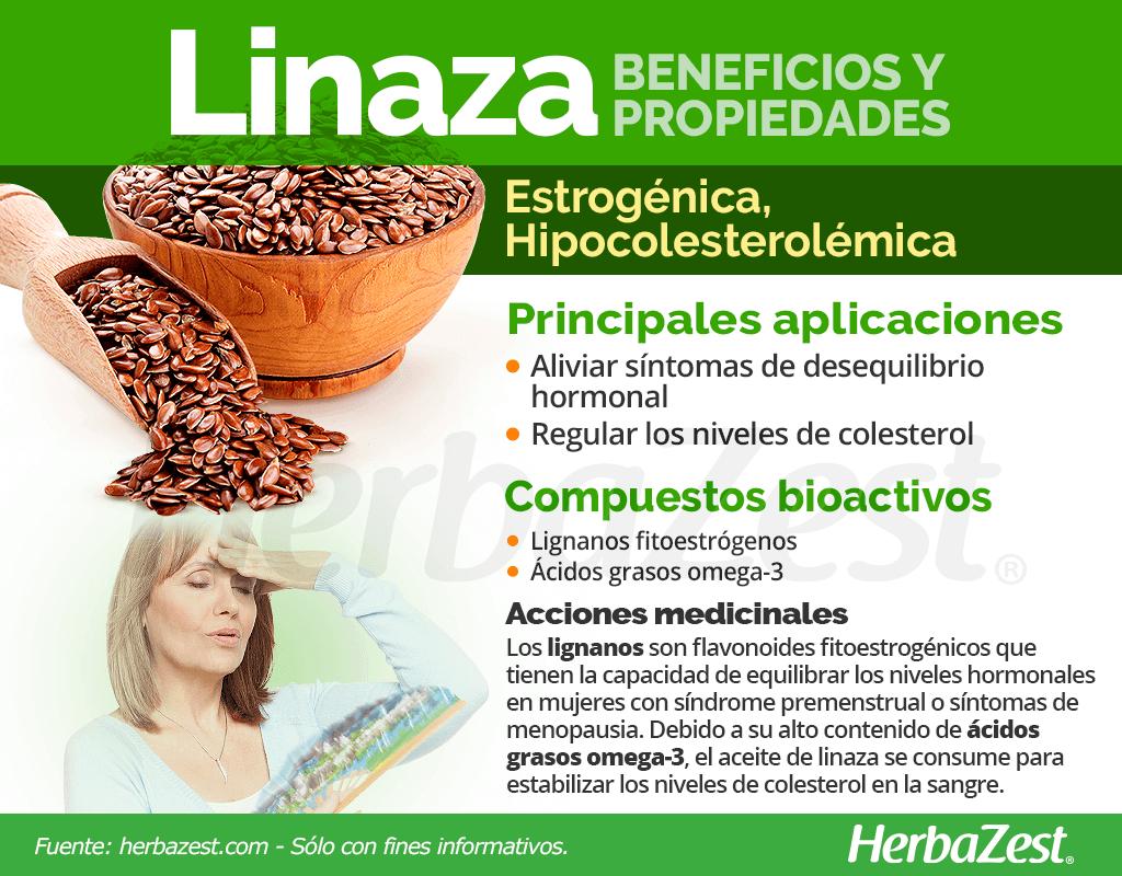 Beneficios y propiedades de la linaza
