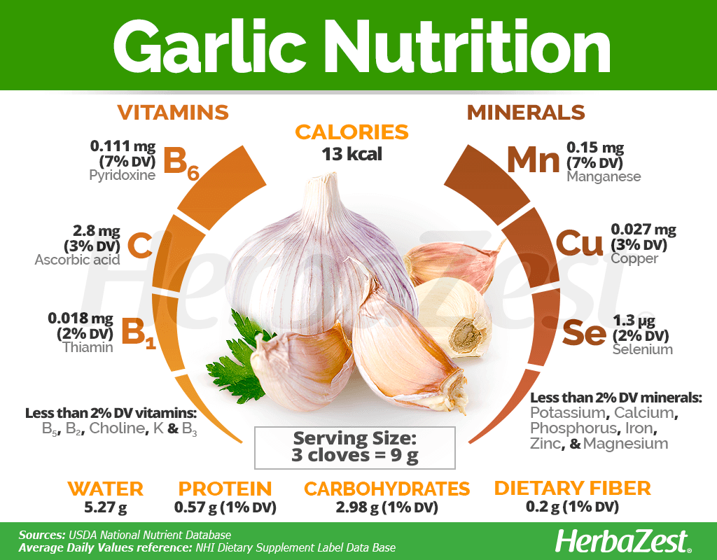 Garlic Nutrition