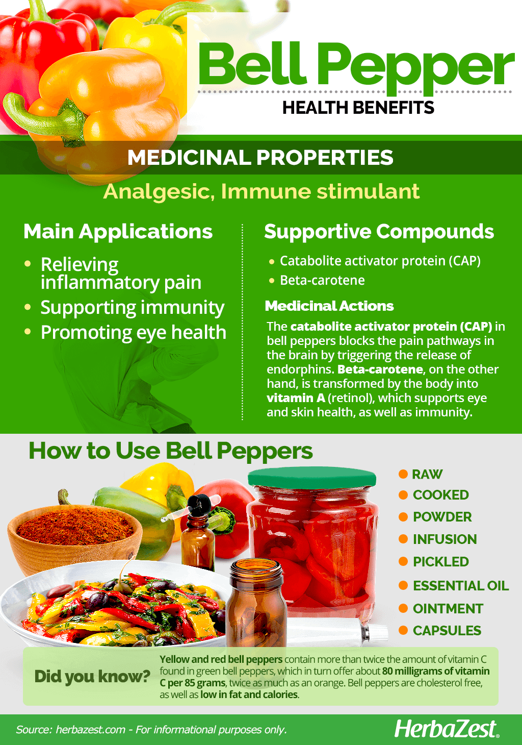 All About Bell Pepper