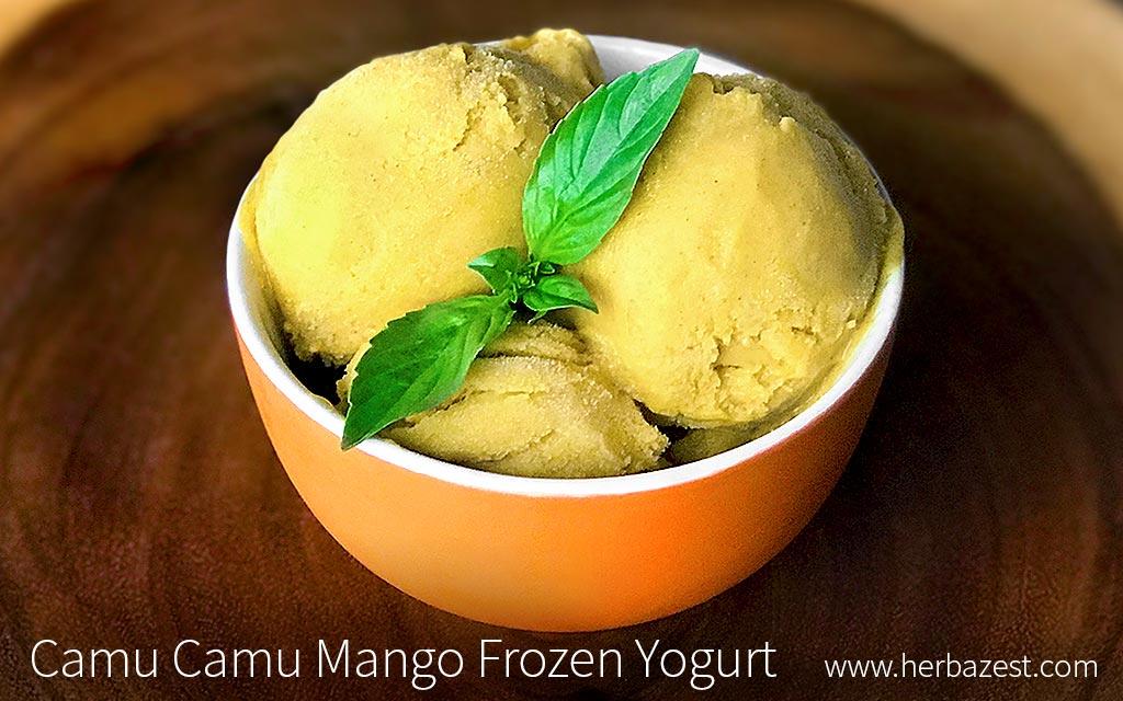 Camu Camu Mango Frozen Yogurt