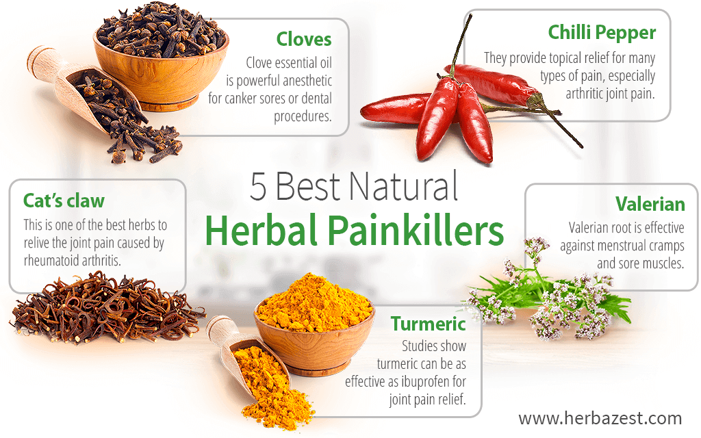 5 Best Natural Herbal Painkillers