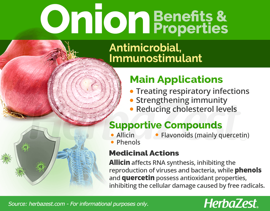 Onion Benefits and Properties