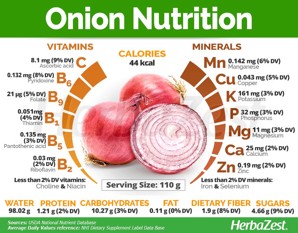 Onion Nutrition