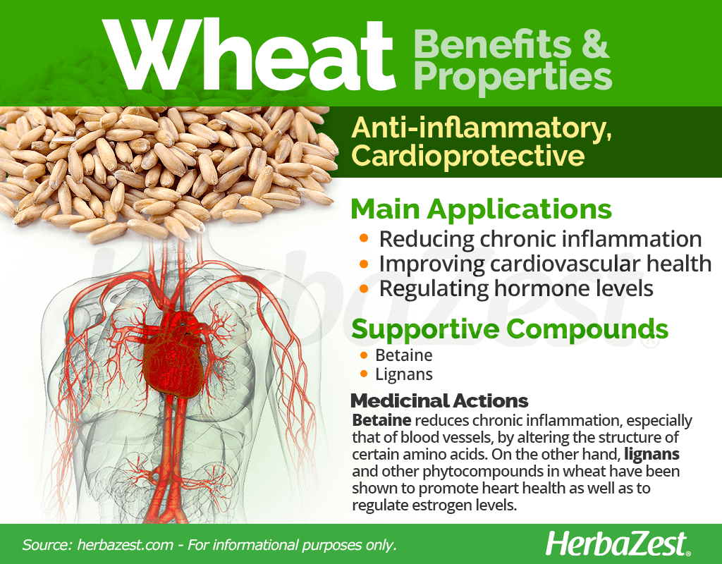 Wheat Benefits and Properties