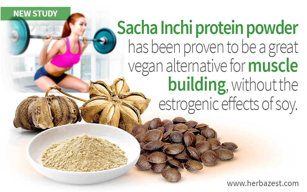 Sacha Inchi Shown as Effective as Soy for Muscle Building