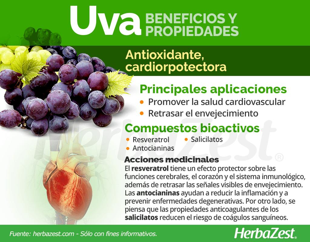 Beneficios y propiedades de la uva