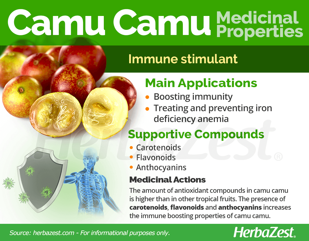 Camu Camu Benefits and Properties