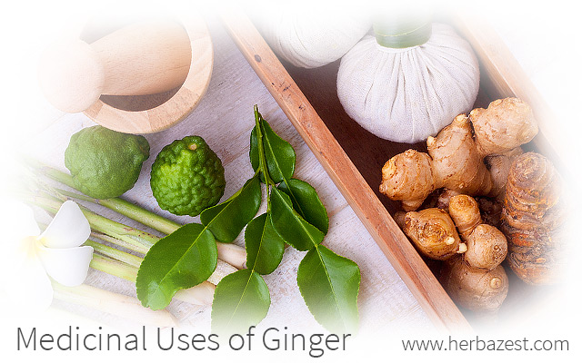 Medicinal Uses of Ginger