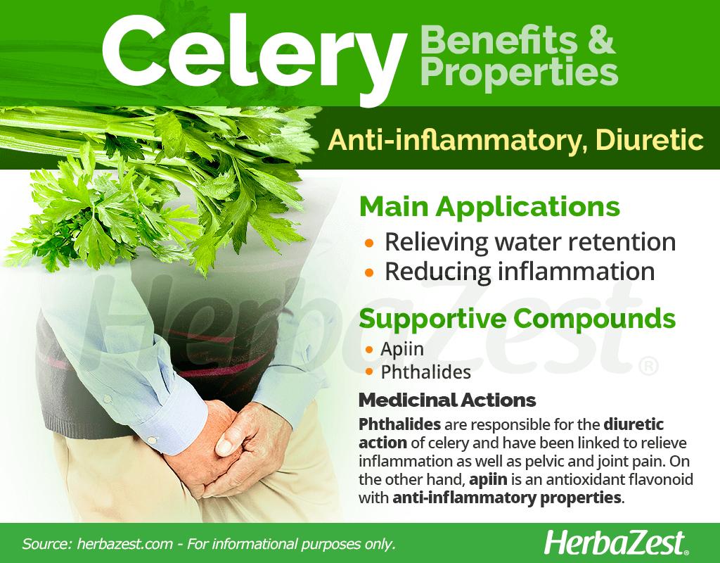 Celery Medicinal Properties