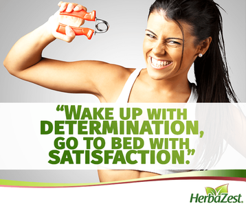 Quote: Wake Up with Determination Go to Bed with Satisfaction