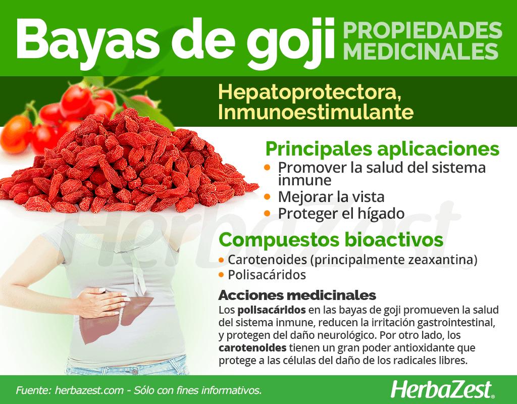 Propiedades medicinales de las bayas de goji