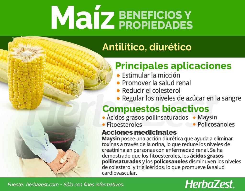 Beneficios y propiedades del maíz
