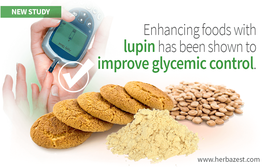 Lupin-enriched foods help regulate blood sugar levels