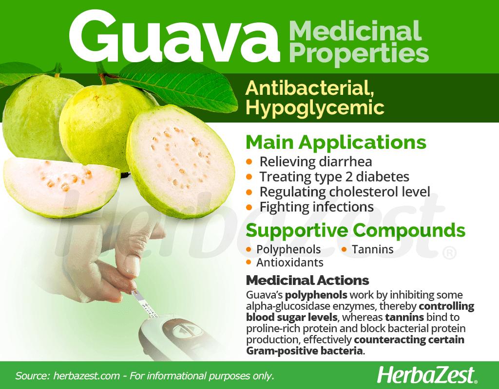 Guava Medicinal Properties