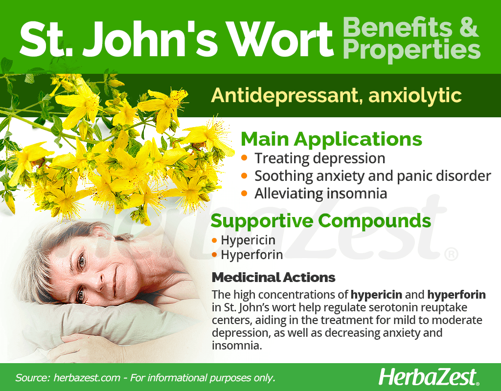 St. John's Wort Benefits and Properties