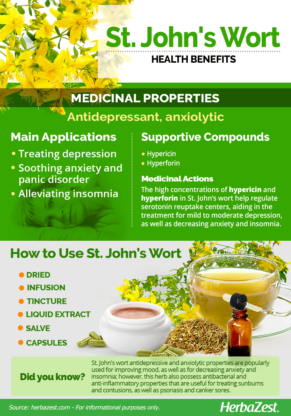 All About St. John's Wort
