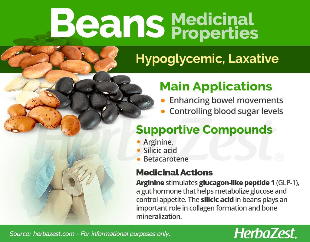 Beans Medicinal Properties