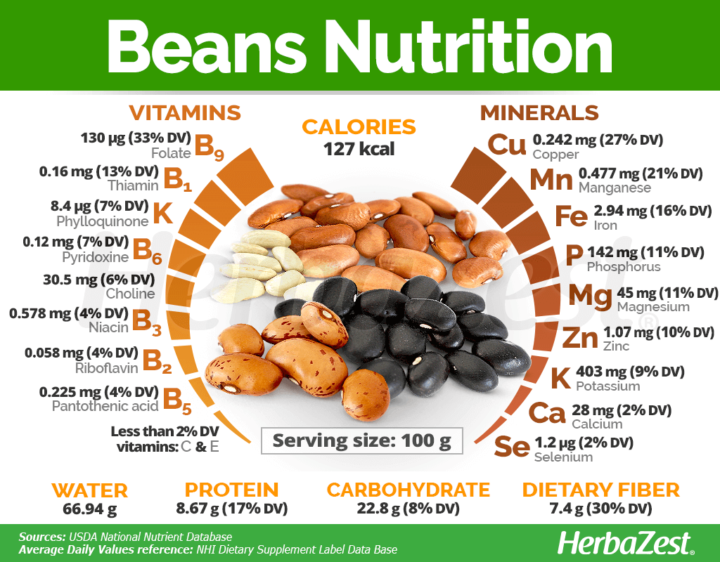 Beans Nutrition
