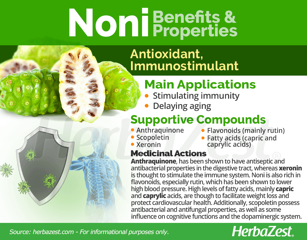 Noni Benefits and Properties