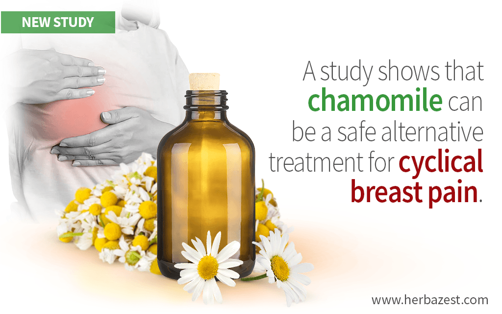 Cyclic Breast Pain Can Be Relieved with Chamomile Oil