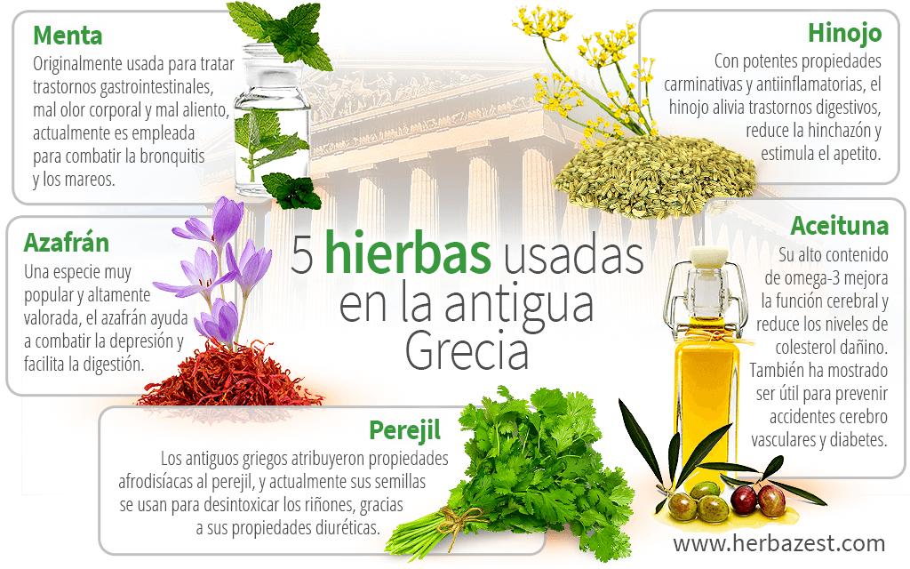 5 hierbas usadas en la antigua Grecia