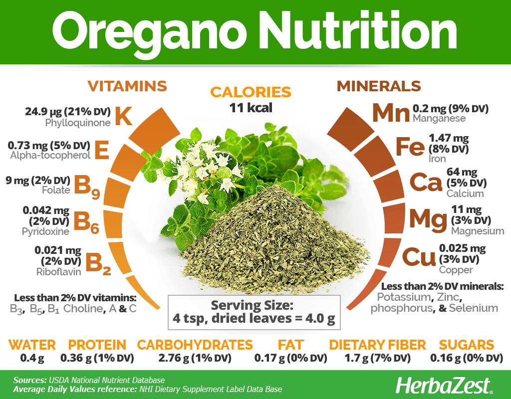 Oregano Nutrition