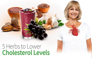 5 Herbs to Lower Cholesterol Levels