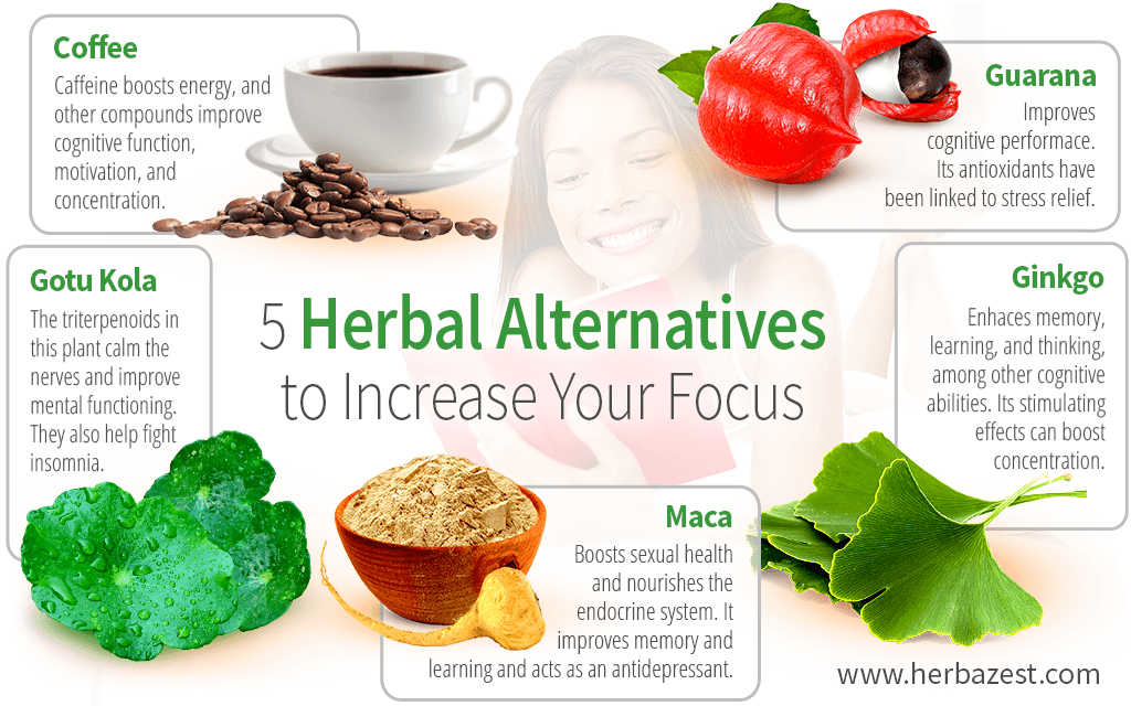 5 Herbal Alternatives to Increase Your Focus
