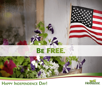 Special Date: USA Independence Day 2015